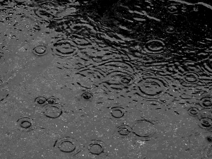 Rainfall (Wikipedia)